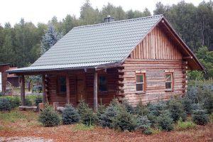 Blockhütte  |  Wildbahn bei Schwedt/O.  |  BJ 2005